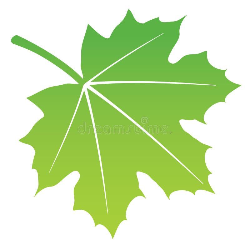 Foglio verde illustrazione vettoriale