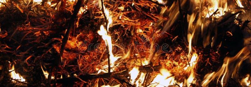 Fogo, chamas em um fundo preto, textura do fogo imagem de stock royalty free