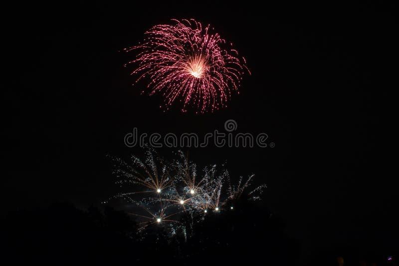 Fogo de artifício bonito no céu imagens de stock