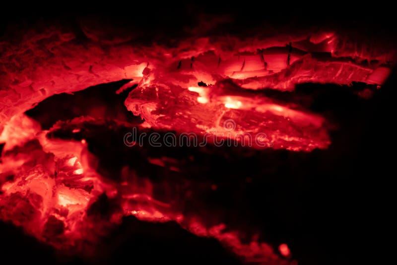Fogo de Oals na noite fotos de stock
