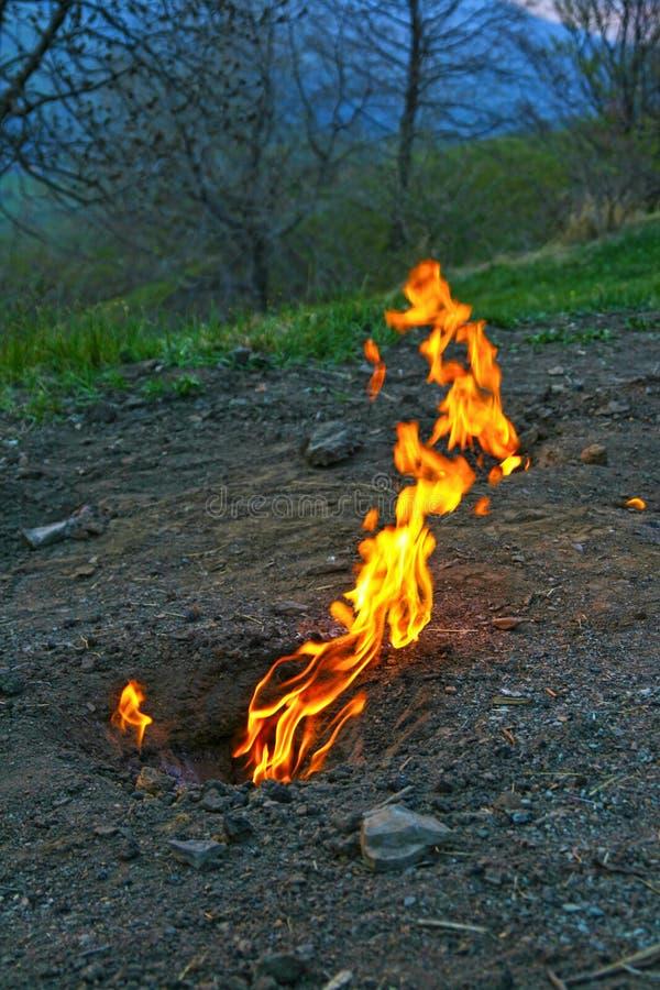 Fogo de vida, queimadura dos gás naturais imagens de stock