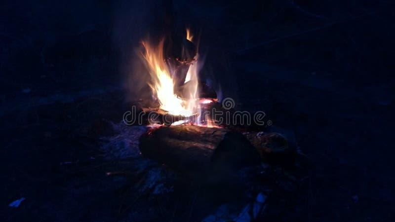Fogo do acampamento imagens de stock royalty free