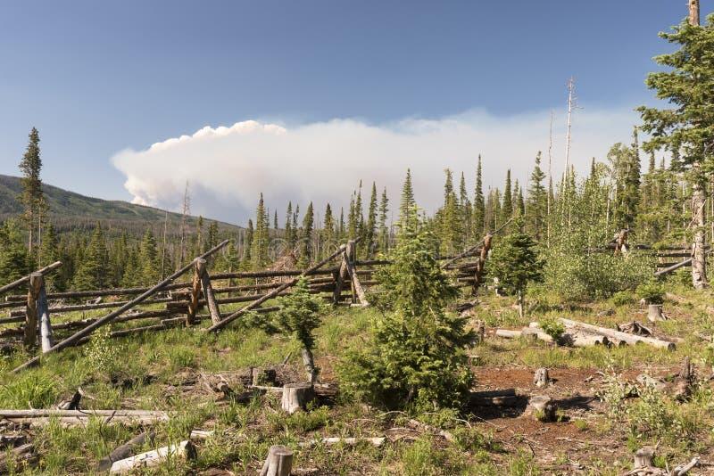 Fogo do Beaver Creek em Colorado central norte fotos de stock royalty free