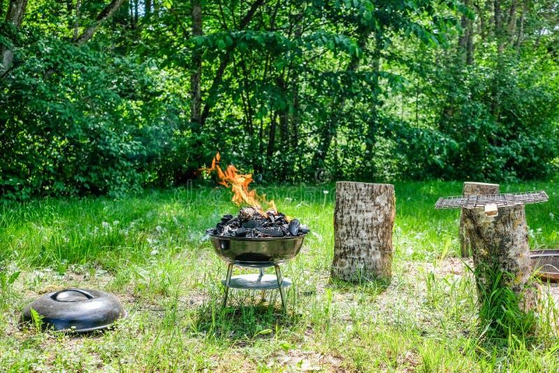 Fogo na grade do carvão vegetal do assado Alimento do churrasco em um tipo s do weber imagens de stock royalty free