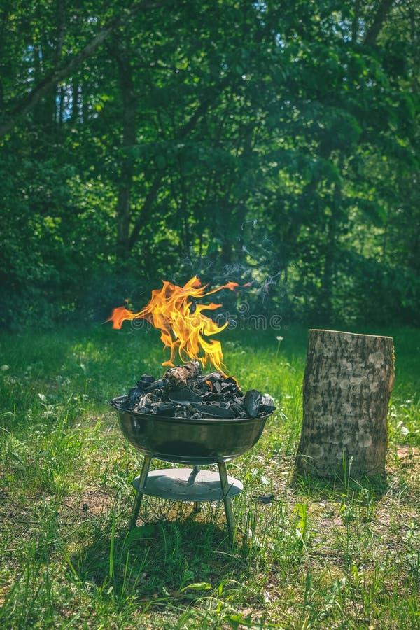 Fogo na grade do carvão vegetal do assado Alimento do churrasco em um tipo s do weber fotografia de stock