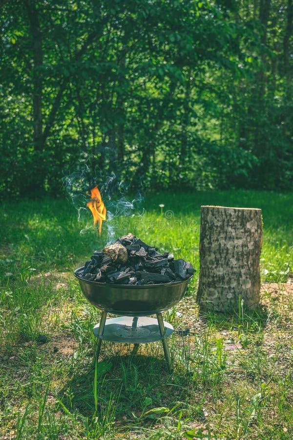 Fogo na grade do carvão vegetal do assado Alimento do churrasco em um tipo s do weber imagens de stock