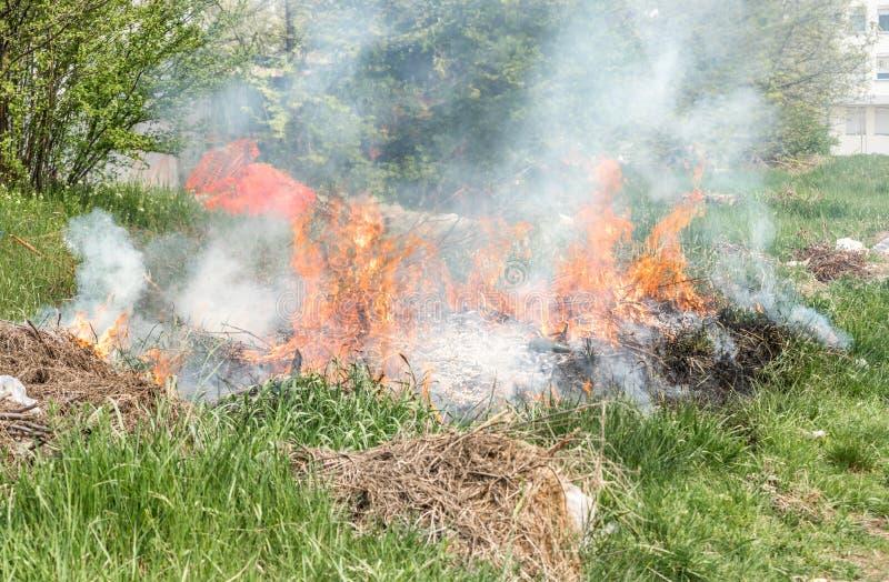 Fogo perigoso da grama com chamas e a nuvem de fumo grandes no parque da cidade perto da construção no foc seletivo urbano do d imagens de stock royalty free