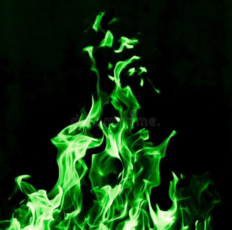 Fogo verde da chama no fundo preto fotos de stock