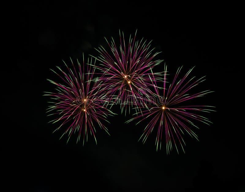 Fogos-de-artifício bonitos no céu noturno imagem de stock royalty free