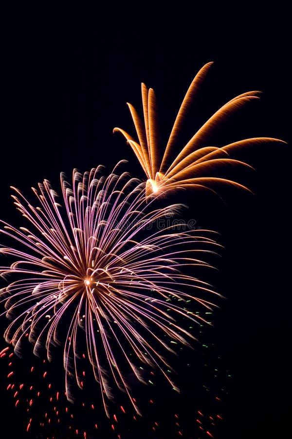 Fogos-de-artifício bonitos no fundo preto do céu imagens de stock royalty free