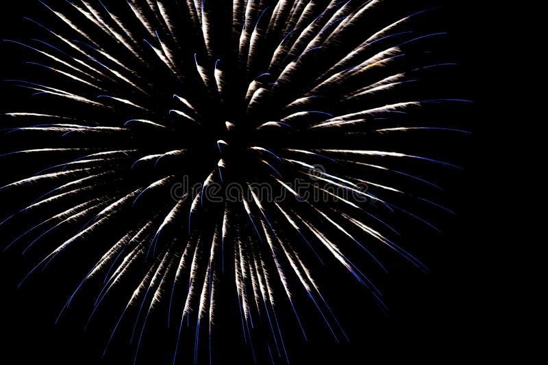 fogos de artifício brancos com faíscas azuis em um fundo preto isolado para a decoração do projeto dos feriados, do ano novo, ass imagens de stock royalty free