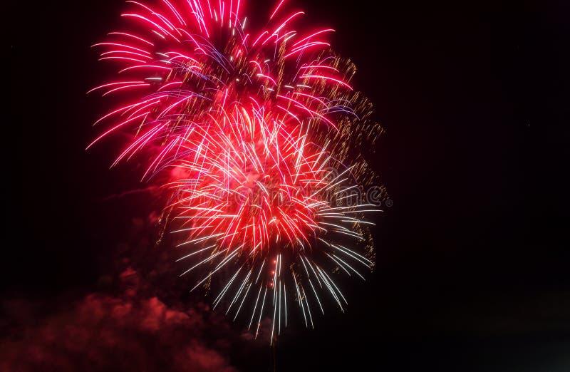Fogos de artifício coloridos bonitos do feriado na noite com exposição longa majestosa imagem de stock royalty free