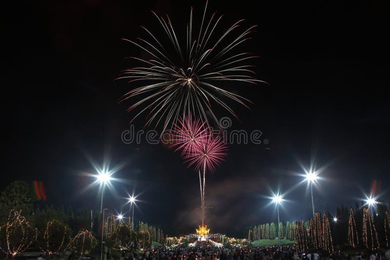 Fogos de artifício coloridos no aniversário do feriado do ano novo foto de stock royalty free