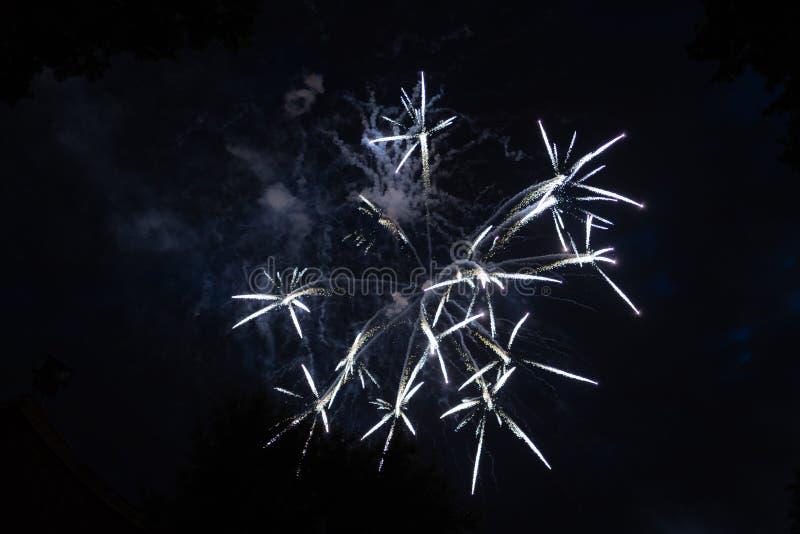 Fogos-de-artifício coloridos no 4o julho imagem de stock royalty free