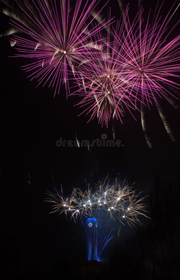 Fogos-de-artifício cor-de-rosa em Ostrava com pulso de disparo da câmara municipal imagens de stock