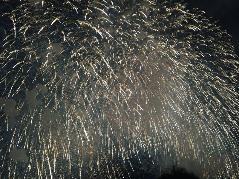 Fogos-de-artifício na noite fotografia de stock
