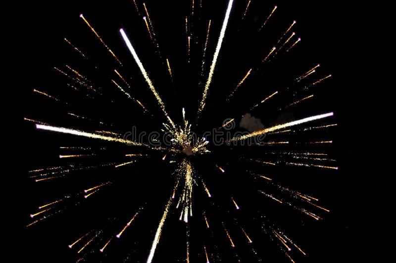 Fogos-de-artifício na noite de Guy Fawkes em Nova Zelândia imagens de stock royalty free