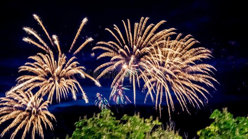 Fogos-de-artifício no verão na margem no feriado fotos de stock royalty free
