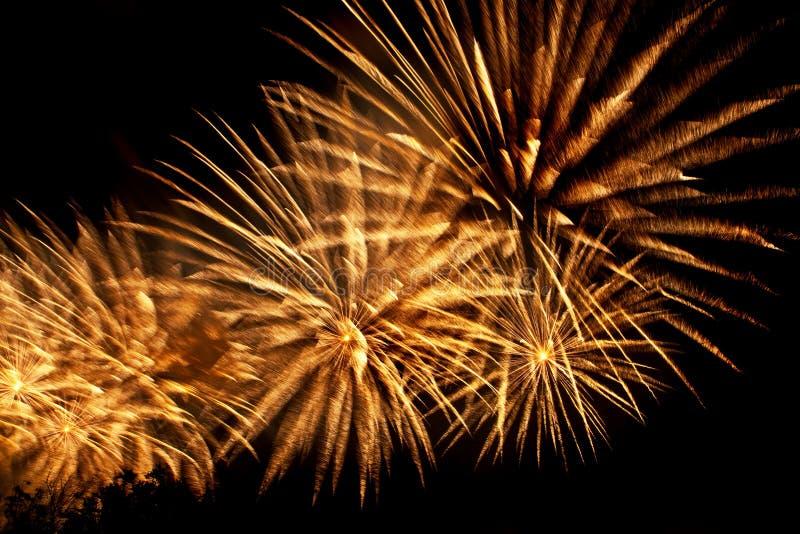 Fogos-de-artifício o céu noturno imagem de stock royalty free
