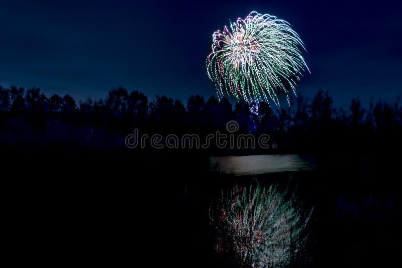 Fogos-de-artifício que explodem sobre a lagoa da floresta imagem de stock royalty free