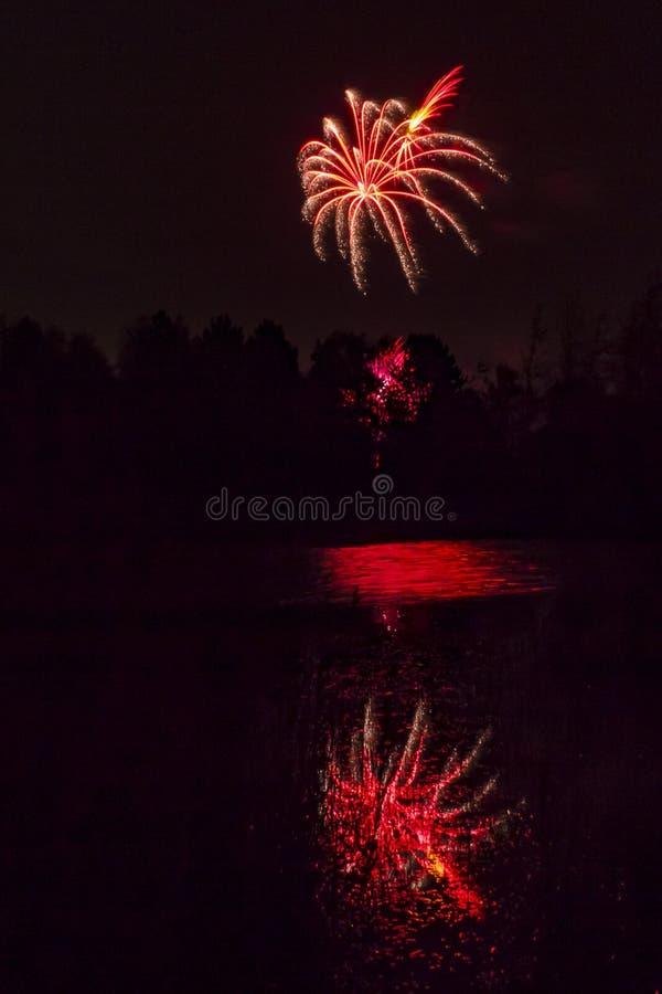 Fogos-de-artifício que explodem sobre a lagoa da floresta foto de stock royalty free