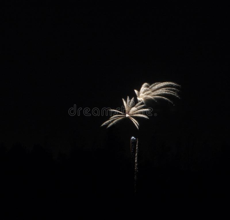 Fogos-de-artifício que explodem sobre a lagoa da floresta imagem de stock