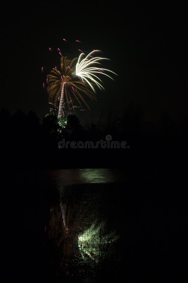 Fogos-de-artifício que explodem sobre a lagoa da floresta foto de stock
