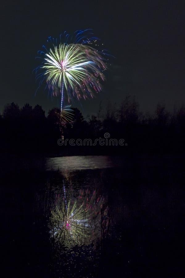 Fogos-de-artifício que explodem sobre a lagoa da floresta fotografia de stock royalty free