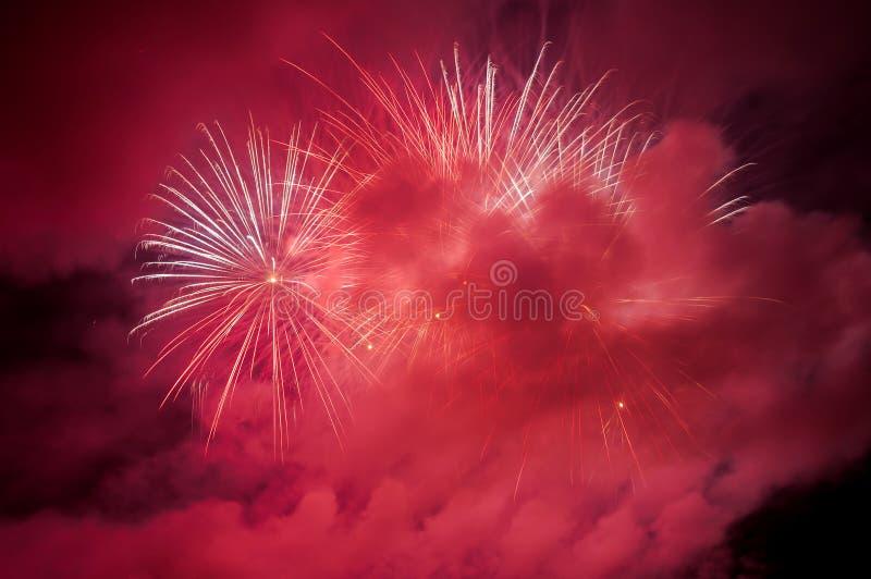 Fogos-de-artifício vermelhos no céu noturno fotografia de stock royalty free