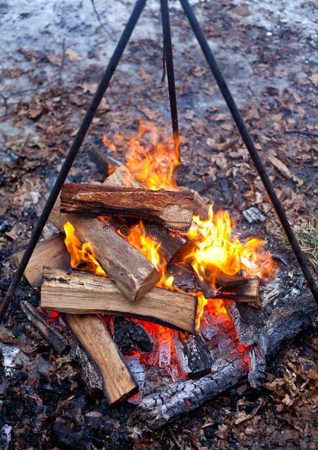 Fogueira com flama foto de stock royalty free