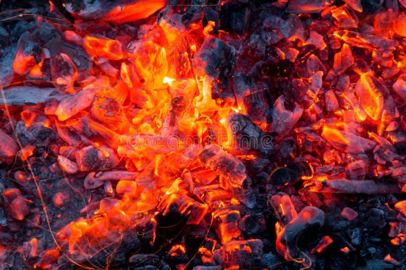 Fogueira com lenha ardente no close up do primeiro plano foto de stock royalty free