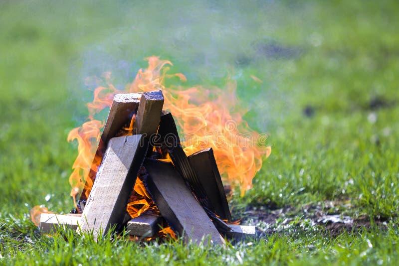 Fogueira de incandescência na natureza Pranchas de madeira ardentes fora no dia de verão Chamas alaranjadas brilhantes, fumo clar imagem de stock