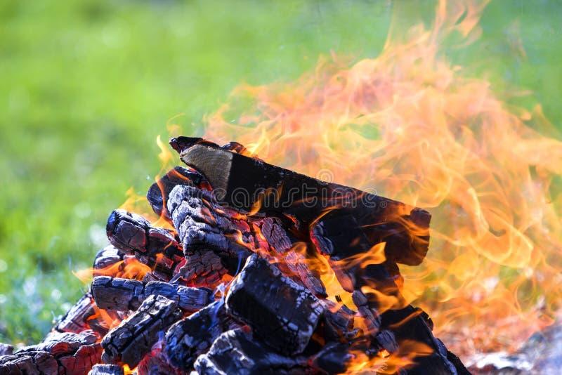 Fogueira de incandescência na natureza Pranchas de madeira ardentes fora no summ fotos de stock