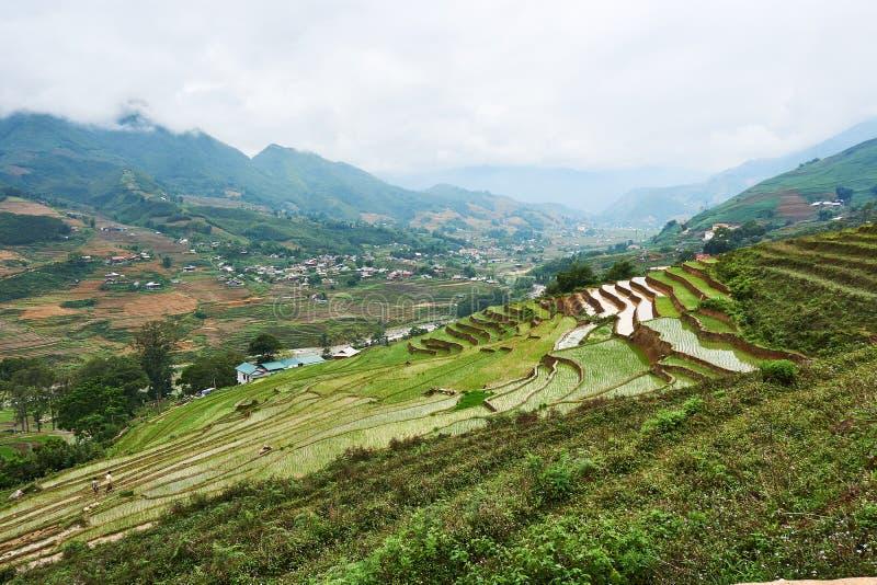 Fogy τοπίο Ricefields στο λαοτιανό valey sapa chai στο Βιετνάμ Sapa, Βιετνάμ - 22 mai 2019 στοκ εικόνες