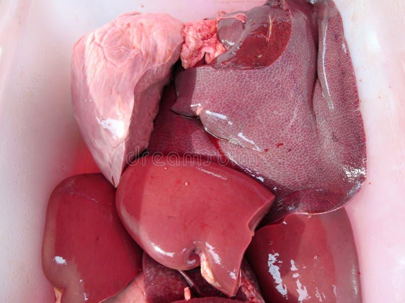 Foie cru de porc image libre de droits