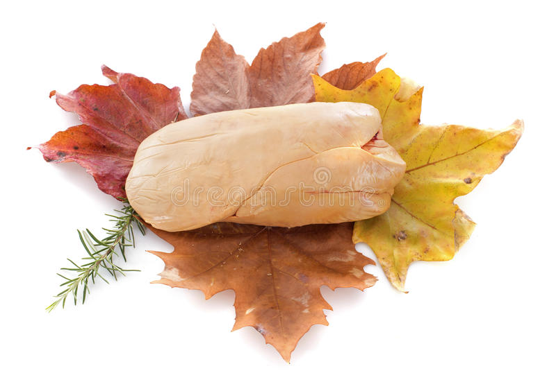 Foie gras on leaf. In front of white background royalty free stock photo