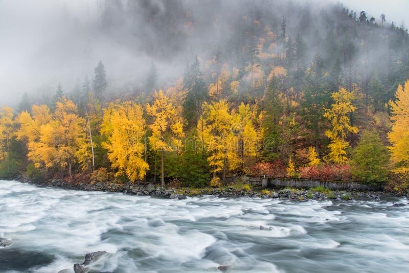 Foilage in Leavenworth con il fiume e la nebbia fotografia stock libera da diritti