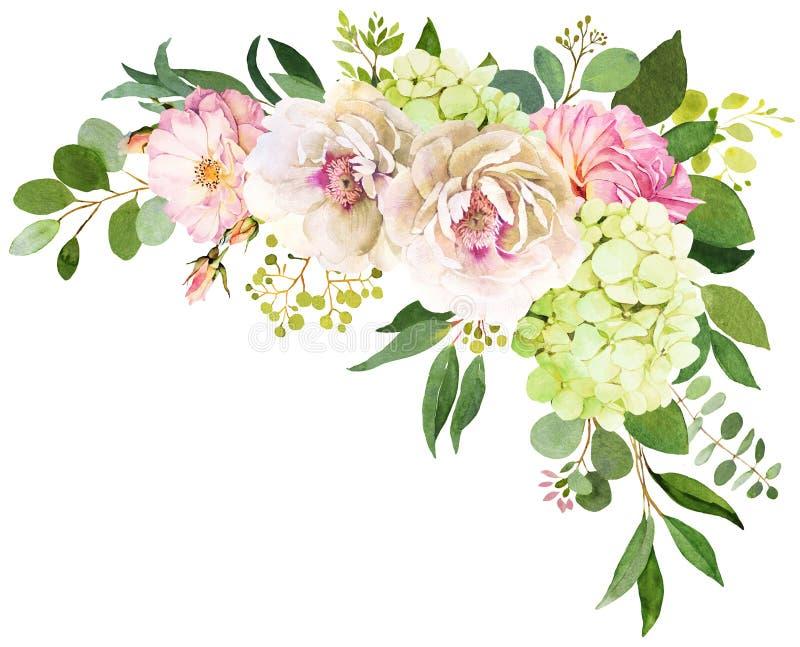 Fokus auf dem Vordergrund Pfingstrose, Hortensie und rosafarbenes Blumenaquarell IL vektor abbildung