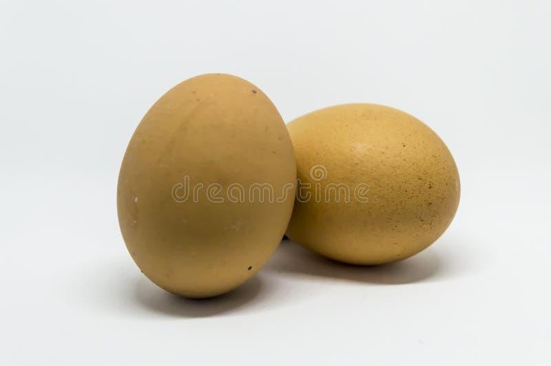 Fokus auf ersten zwei Eiern stockbild