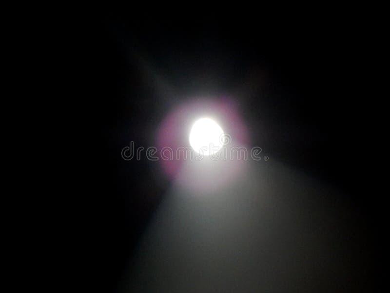 Fokusera ljus som kommer in i ett mörkt rum royaltyfri foto
