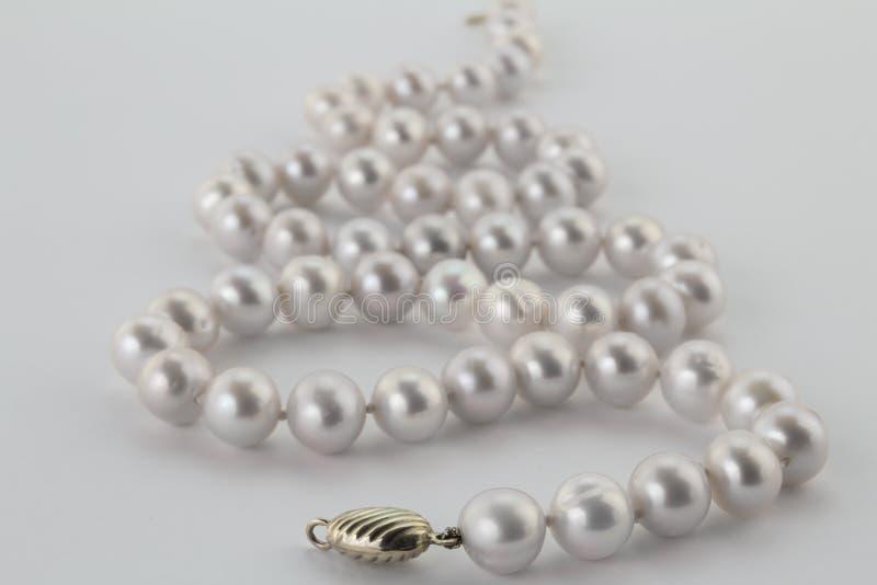Fokusera på framdelen av den pärlemorfärg halsbandet som isoleras på vit fotografering för bildbyråer