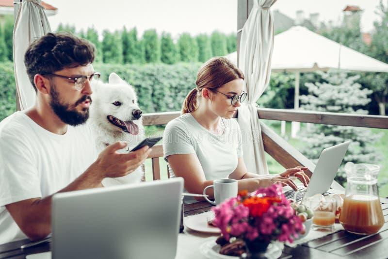 Fokuserad kvinna som arbetar på bärbara datorn medan hennes avslutande appell för make fotografering för bildbyråer