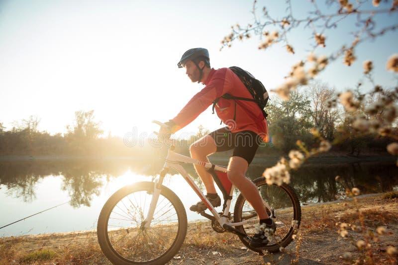 Fokuserad ung man som rider en mountainbike vid floden eller sjön Solinställning över vatten i bakgrund royaltyfri fotografi