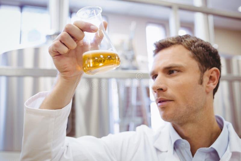 Fokussierter Untersuchungsbecher des Wissenschaftlers mit Bier stockbild