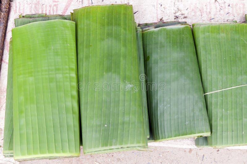 Folded Banana Leaves royalty free stock images