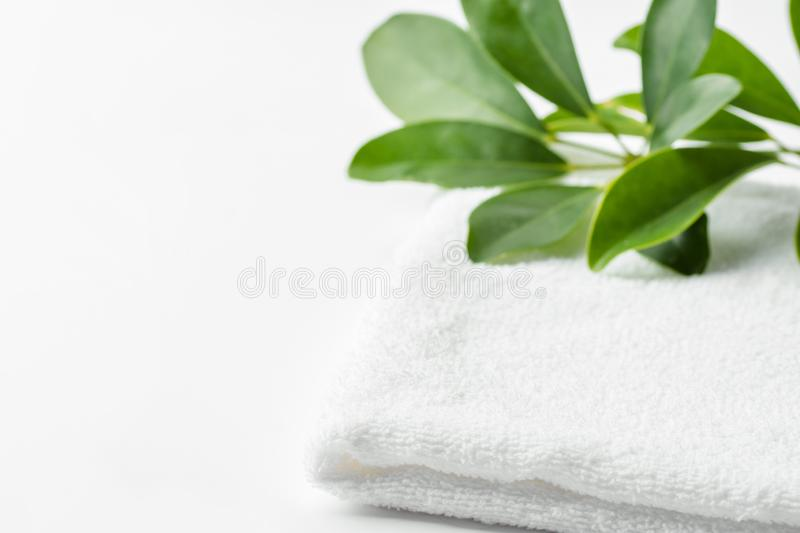 Folded clean white fluffy terry towel green house plant in bathroom. Women`s baby hygiene laundry body care wellness spa. Relaxation concept. Minimalist poster royalty free stock photos