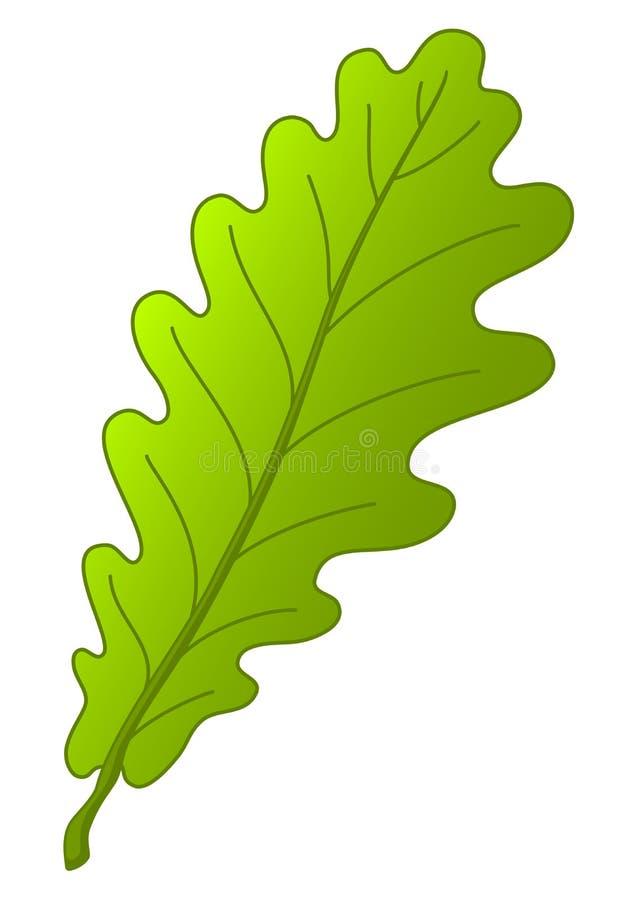 Folha da árvore de carvalho ilustração royalty free