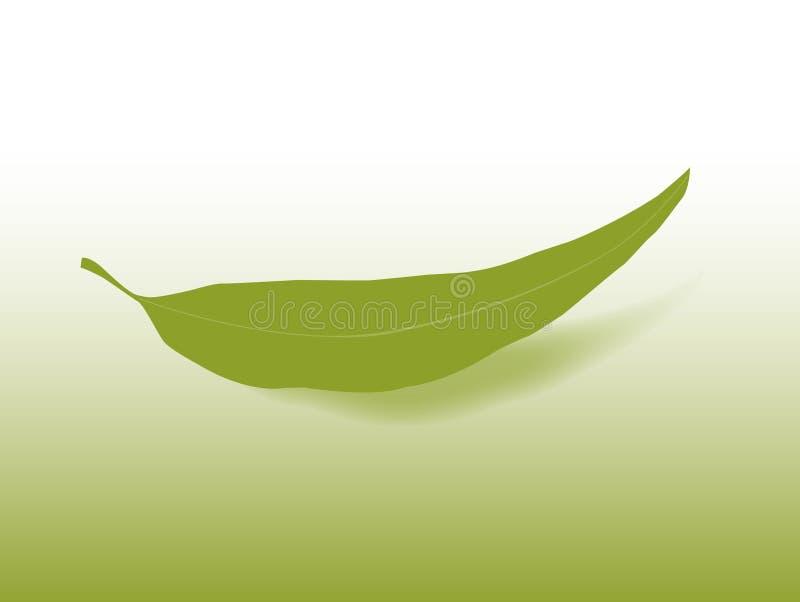 Folha da goma ilustração do vetor