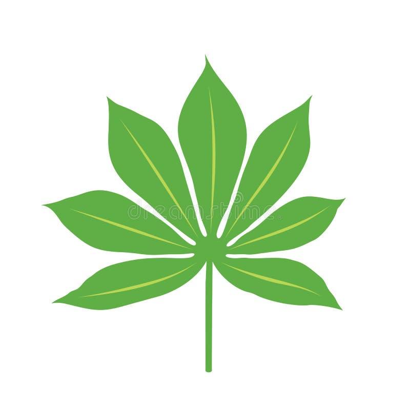 Folha da planta da mandioca, no fundo branco ilustração royalty free