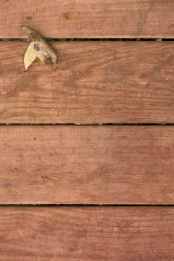 Folha da queda em deckboards fotografia de stock
